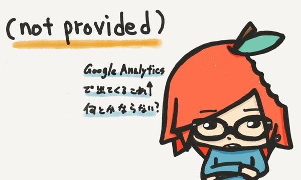 (not provided)って何だ?Googleアナリティクスの検索キーワードで一番多くて気になるよね。